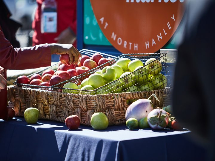 Nutritionists Will Highlight Healthy Food Options During  Link Market Food Demonstrations at Metro Transit Centers